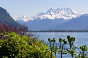 Blick über den Genfer See